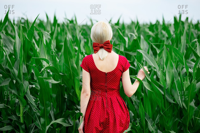 Blonde lady in beautiful red dress in cornfield