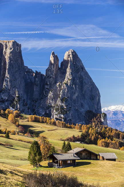 Schlern (2450 m) and Santnerspitze (2414 m) with larch trees in autumn colors by little chalets on a meadow, Alpe di Siusi, Seiser Alm, autumn, Dolomites, Bolzano district, Alto Adige, Tentino, South Tyrol, Italy