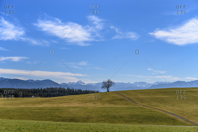 Germany, Bavaria, Upper Bavaria, Tolzer Land, Dietramszell, Foggenbeuern district, view of alpine chain