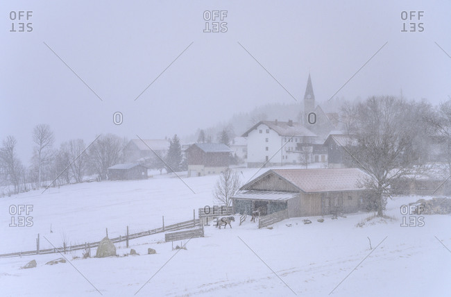 Germany, Bavaria, Lower Bavaria, Bavarian Forest, Mauth, district Finsterau, town view with parish church, snow flurry