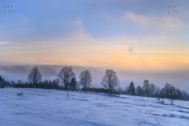 Germany, Bavaria, Lower Bavaria, Bavarian Forest, Mauth, Finsterau district, winter landscape, morning mood