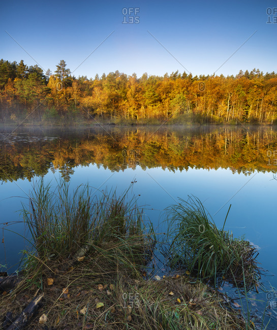 Germany, Mecklenburg-West Pomerania, Muritz National Park, Stiller See in autumn, colorful forest reflected, morning fog, Wienpietschseen