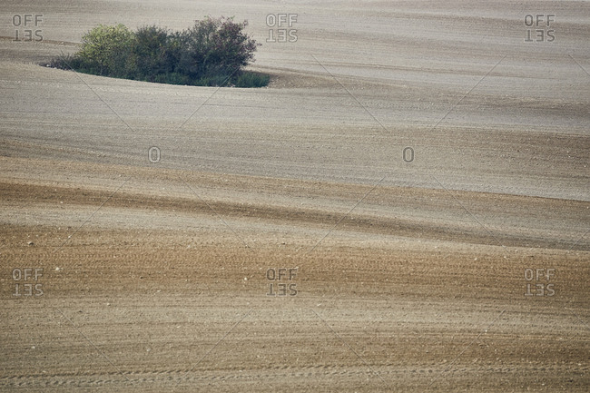 Germany, Mecklenburg-West Pomerania, agricultural steppe, field, brown