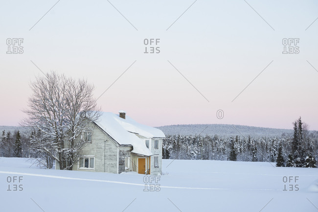 Finland, Lapland, Raattama, wooden house, green, dusk, winter