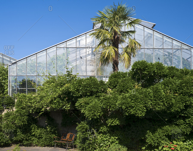 May 29, 2019: Europe, Germany, Hesse, Marburg, botanical garden of the Philipps University, greenhouses and tropical houses