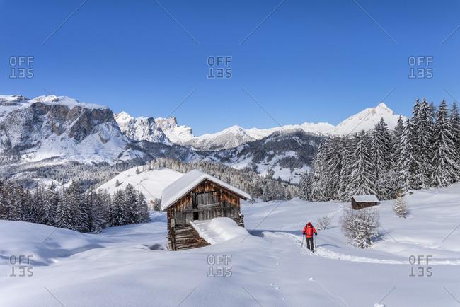 Hochabtei / Alta Badia, Bolzano province, South Tyrol, Italy, Europe. Ascending with snowshoes to the Armentara meadows