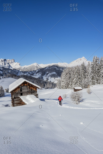 Hochabtei / Alta Badia, Bolzano province, South Tyrol, Italy, Europe. Ascending with snowshoes to the Armentara meadows