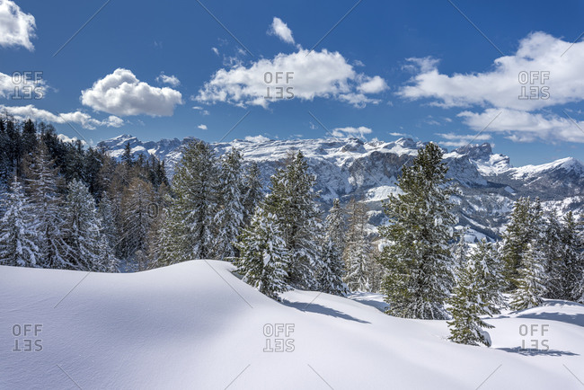 Hochabtei / Alta Badia, Bolzano province, South Tyrol, Italy, Europe. Winter on the Armentara meadows. In the background the Sella group, the Puez group and the Odle peaks