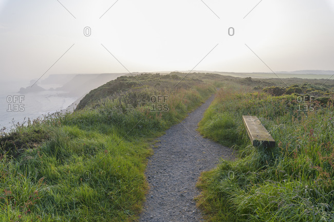 Bench on steep coast with fog in the morning, Godrevy Heritage Coast, Gwithian, Cornwall, England, United Kingdom, Europe