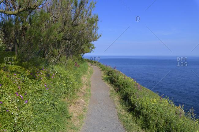 Footpath on coastline, Lizard point, Cornwall, South West England, England, United Kingdom, Europe