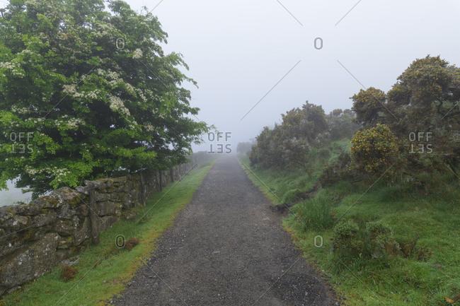 Footpath on foggy morning through the Dartmoor, Two Bridges, Princetown, Dartmoor, Devon, South West England, England, United Kingdom, Europe