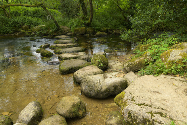 Stone path over a river in the forest, Devon, England, United Kingdom, Europe