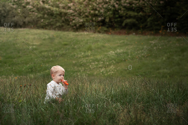 Toddler boy sitting in tall grass biting a carrot