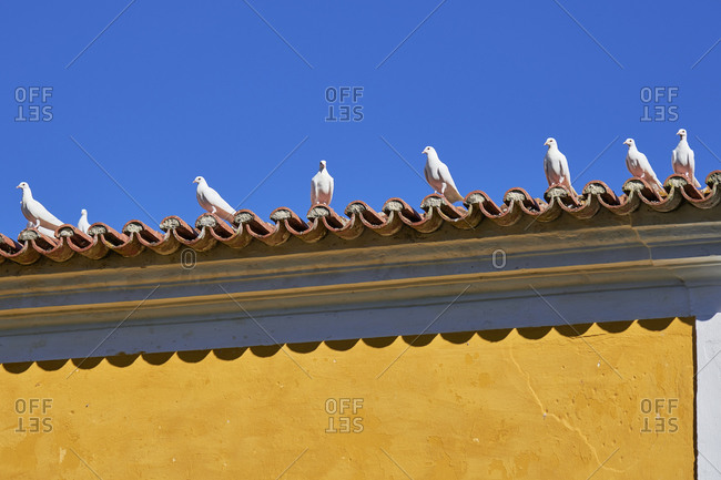 White pigeons sitting on a roof under a blue sky in Lisbon, Portugal