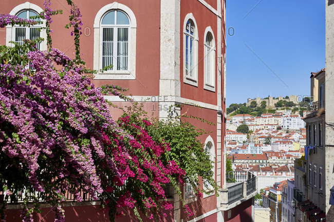 Flowers and buildings in Lisbon viewed from Calcada do Duque, Portugal