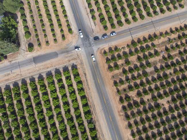 Traffic intersection near Yuba City surrounded by fruit tree farms in California, USA
