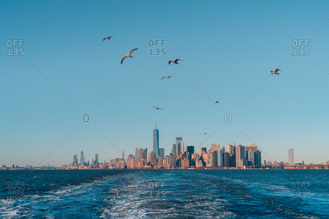 View from floating in water boat of Manhattan skyline with birds flying against blue cloudless sky