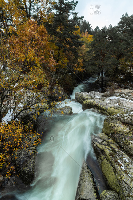 Top view of amazing natural landscape of rapid shallow river streaming among boulders in mountainous terrain with forest in cloudy autumn day