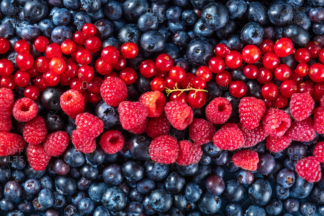 Fresh blueberries, red currants and raspberries texture, shot from the top