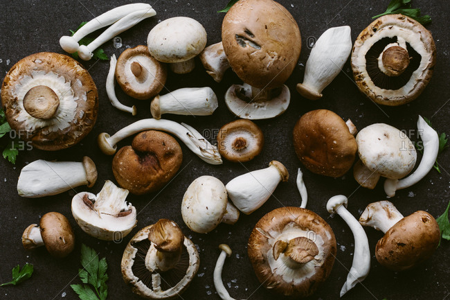 Top view of assorted mushrooms and parsley leaves scattered on black surface in kitchen