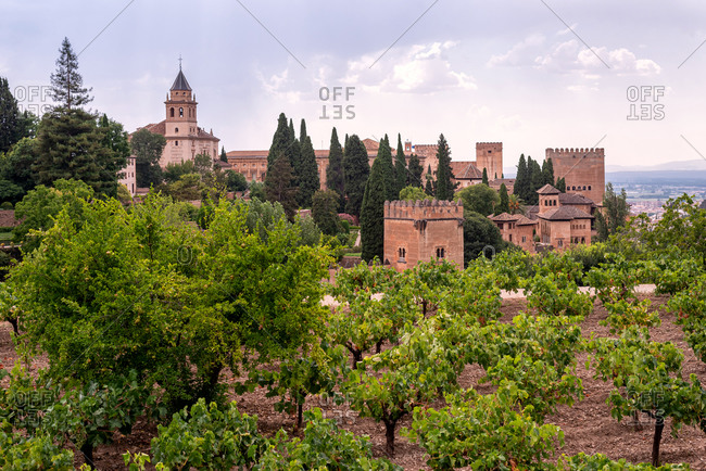 Granada, Spain - January 0, 1900: Generalife vineyards around the Alhambra complex in Granada