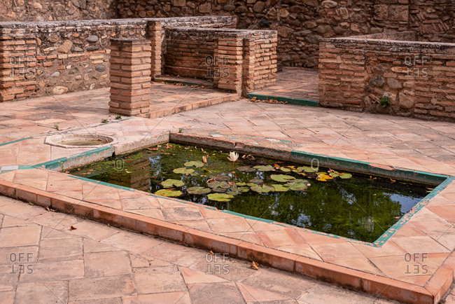 Granada, Spain - January 0, 1900: Nenufar in the gardens of La Alhambra in Granada, Spain