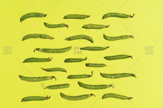 Studio shot of green pea pods against yellow background