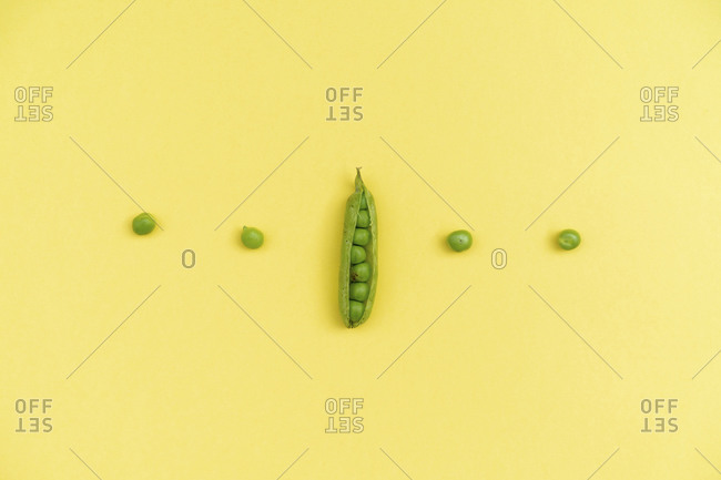 Studio shot of row of green peas and single pea pod against yellow background