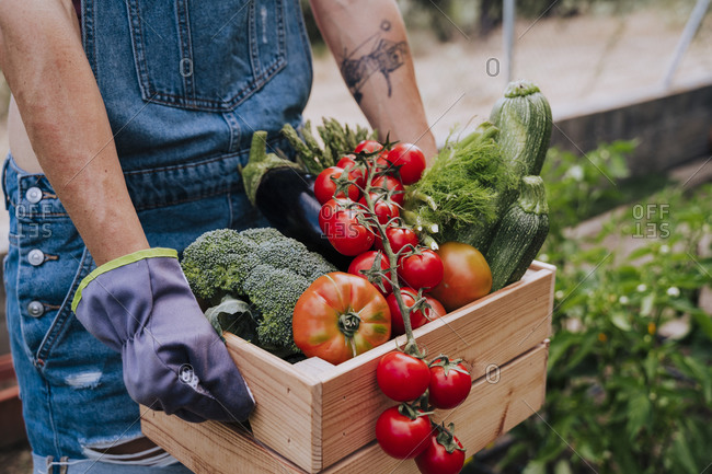 Close-up of woman holding wooden crate with various vegetables while standing in community garden