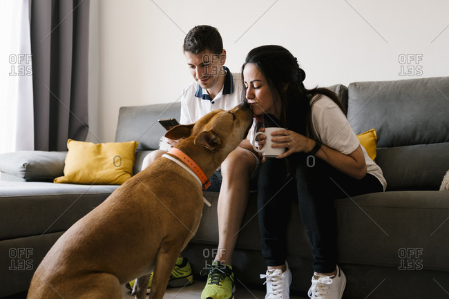 Woman kissing pet dog while sitting on sofa at home
