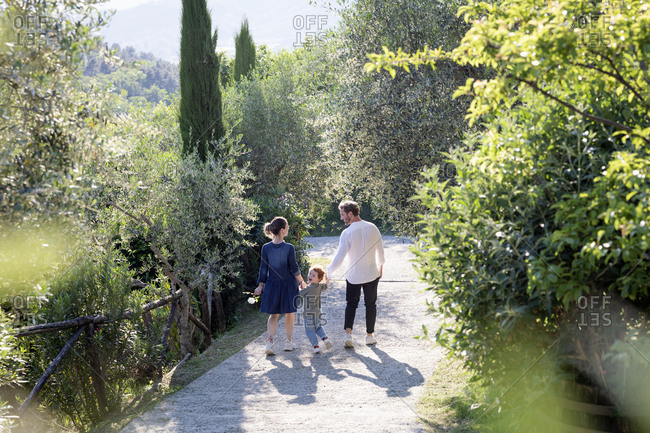 Family walking on footpath amidst green plants at olive orchard during sunny day
