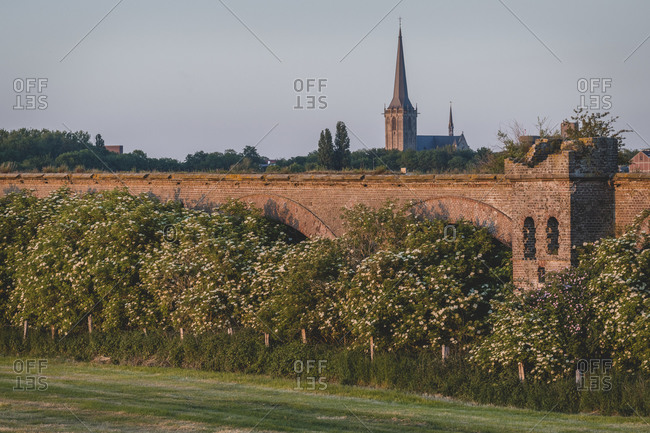 Germany- North Rhine-Westphalia- Wesel- Trees blossoming along ruins of Wesel Railway Bridge
