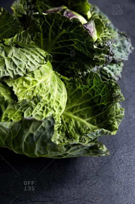 Fresh and whole cabbage head on a moody background