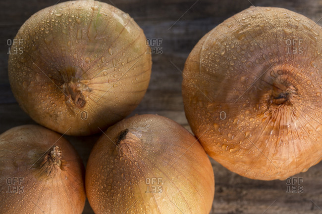 Close up of wet fresh onions