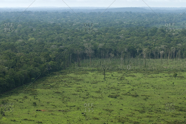 Bird's eye view over green landscape in Brazil