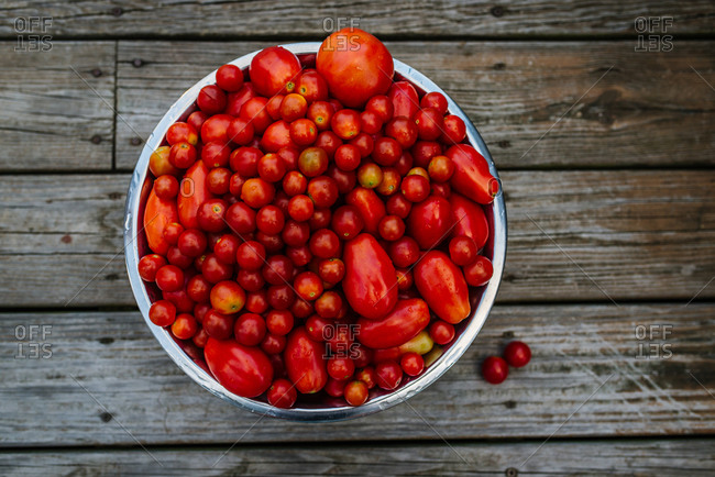 Overhead view of bowl of tomatoes
