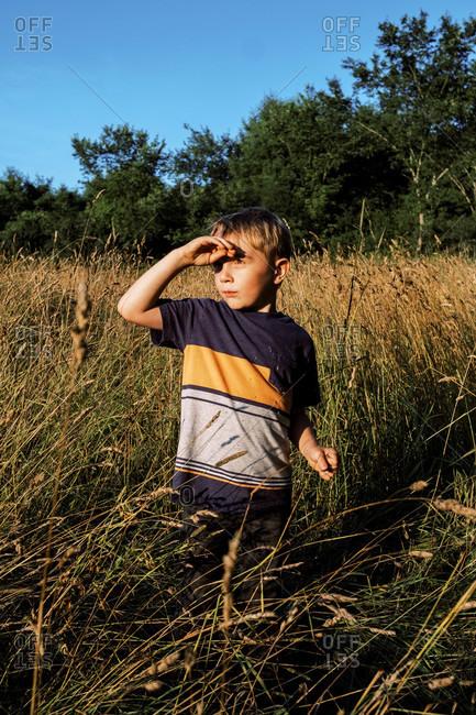 A boy in a field of tall grass under a blue sky