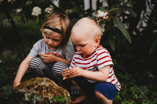 White male toddlers playing in nature discovering insects