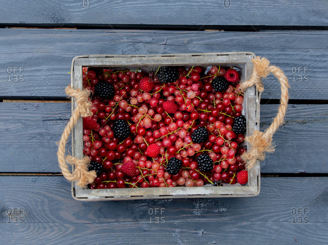 Blackberry, red and white currants in a crate on wooden table