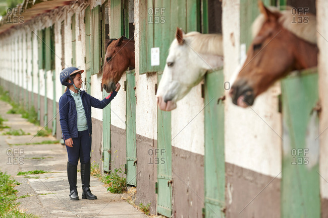 Cheerful child in helmet and high boots standing on walkway while stroking chestnut stallion peeking out of stabling near horses on farm
