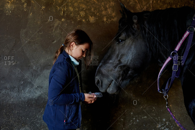 Side view of tender teen jockey standing in stable and feeding black horse