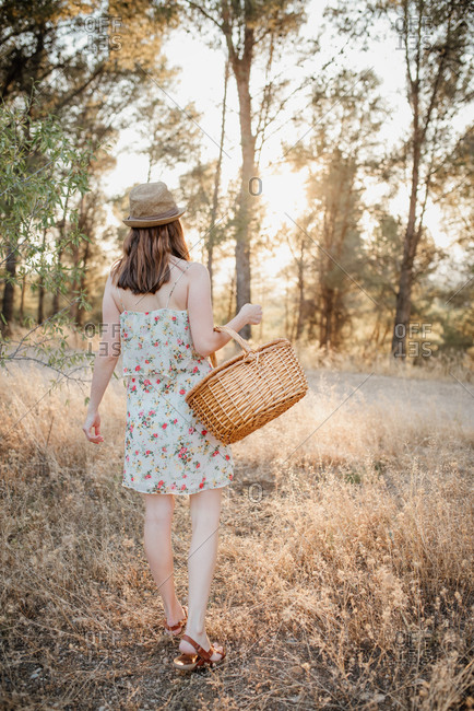 Back view of unrecognizable woman in sundress and hat with wicker basket over arm standing on picnic blanket in back lit in summer park and looking away