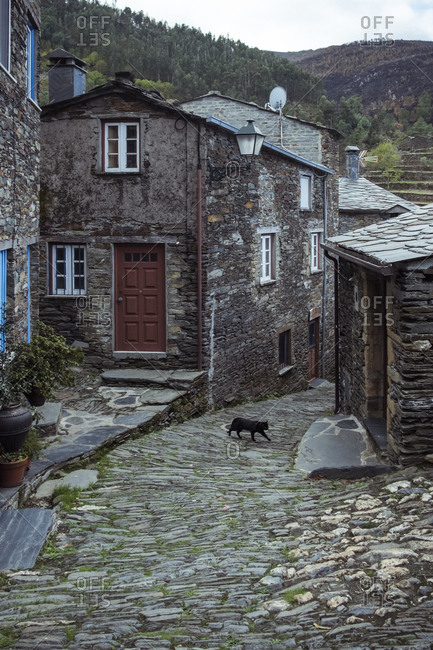 Exterior of aged masonry building with windows and wooden door cobblestone street and cat walking on street with mountains behind under cloudy sky