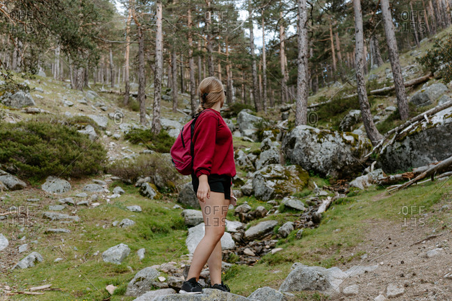 Low angle full length side view of unrecognizable female hiker standing on stone and looking away during trekking in forest in Navacerrada in Spain