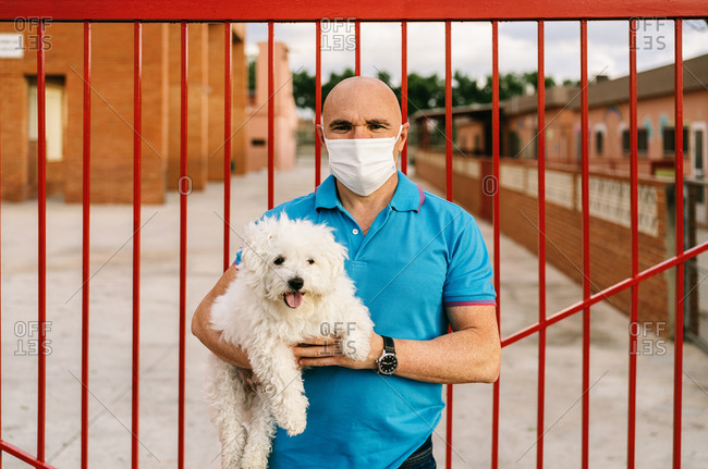 Serious male in casual blue shirt and face mask standing with cute white Bichon Frise dog on hands against red metal palisade and looking at camera on summer day