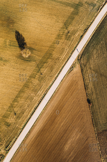 From above aerial view of straight road going through agricultural field in rural area in summer day as a man walks down the road