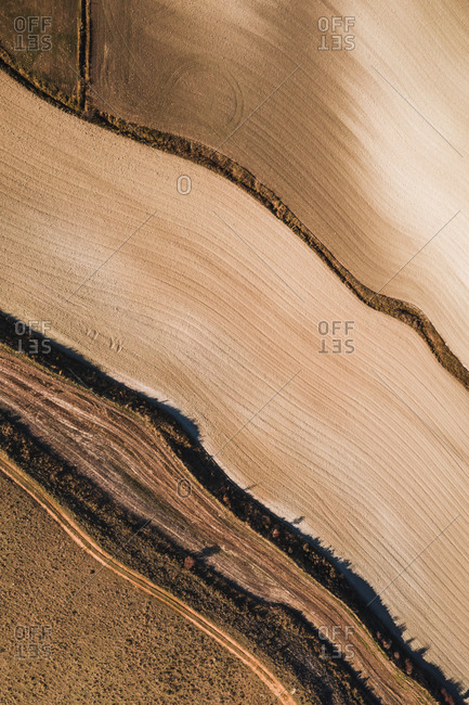 From above aerial view of agricultural field in rural area in summer day