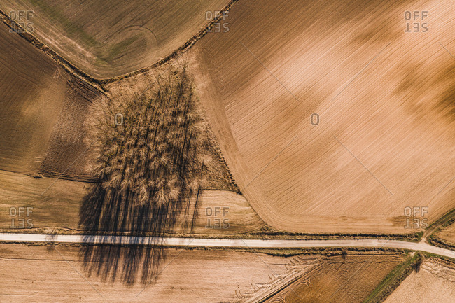 From above aerial view of straight road going through agricultural field in rural area in summer day