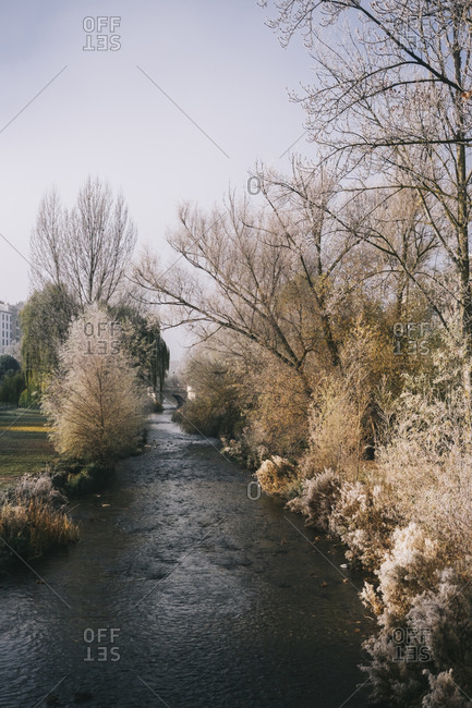 Picturesque scenery of river with calm flow surrounded by trees and bushes covered with frost in winter in Burgos