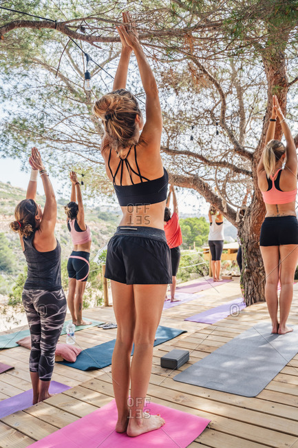 Back view of unrecognizable women in sportswear standing on mats doing upward salute pose practicing yoga on wooden platform surrounded by trees and plants on nature in daylight